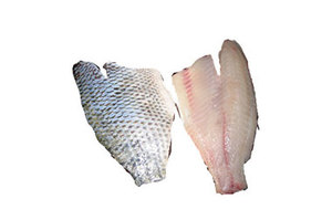 TILAPIA FILLET SKIN ON